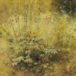 Grass. Ivan Ivanovich SHISHKIN